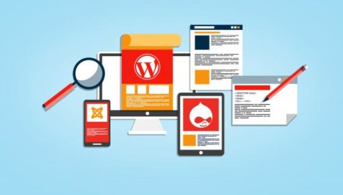 10 Best WordPress Plugin for Beginners