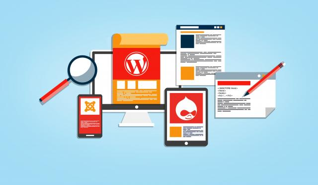 10 Best WordPress Plugin for Beginners